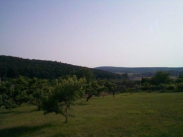 Felsőörs- Öreg hegy szőlős területi részén, csendes nyugodt környeze? 2