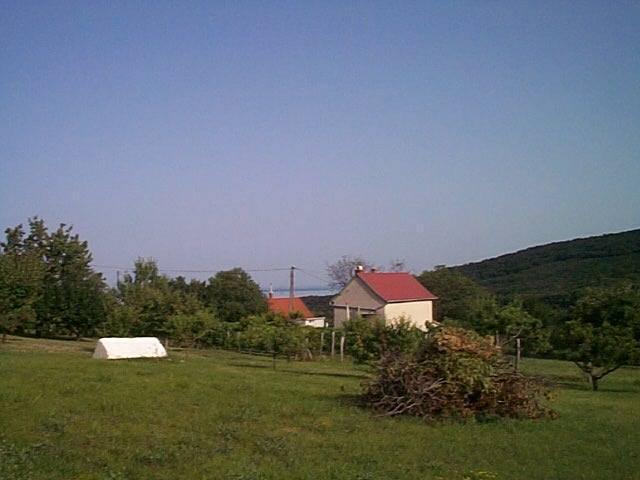 Felsőörs- Öreg hegy szőlős területi részén, csendes nyugodt környeze? 3