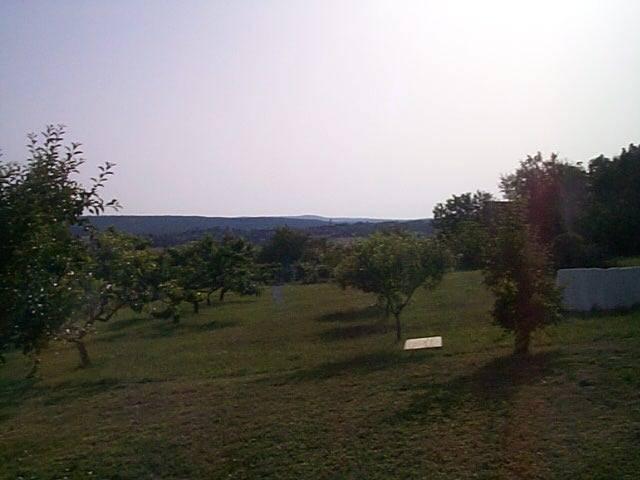 Felsőörs- Öreg hegy szőlős területi részén, csendes nyugodt környeze? 4