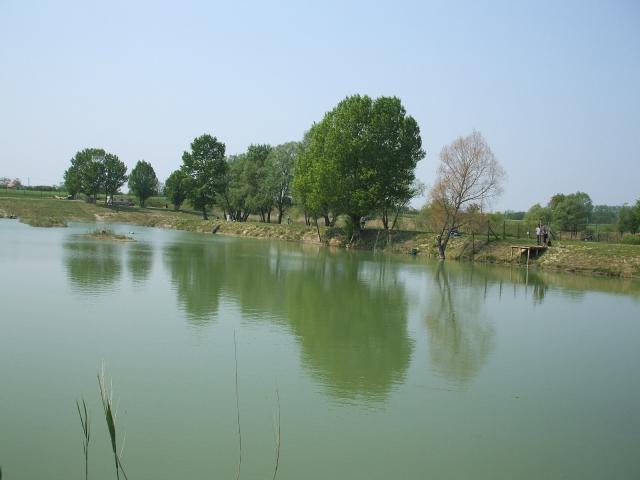 Pápa melletti csendes falu határán 54000 m2-es területen lévő szabad… 2