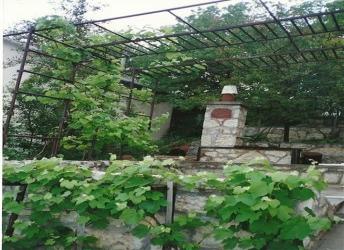 Pécselyen, domboldalban 3365 m2-es telek szőlővel eladó. A tulajdono… 4
