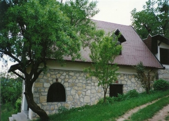 Pécselyen domboldalban 3365 m2-es telken elhelyezkedő, hangulatos, j… 9
