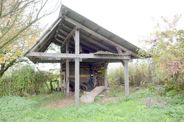 Nagyvázsony mellett, Baráti pusztán, tanyán 5000 m2-es osztatlan köz… 6