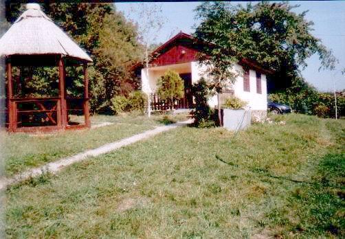 Balatonfüred, Lóczy-barlang irányában, erdős környezetben, osztatlan… 2