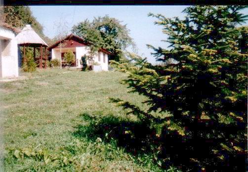 Balatonfüred, Lóczy-barlang irányában, erdős környezetben, osztatlan… 1