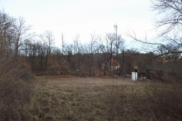 Balatonalmádi Öreghegyen erdős környezetben 2295 m2-es belterületbe … 3