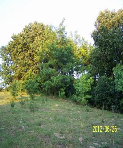 Szápár Zirctől északkeletre található kedves kis település a Bakonyb… 5